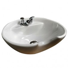 Backwash Shampoo Bowl