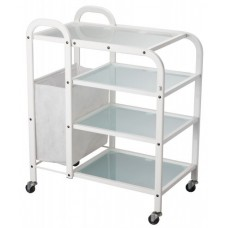 Dual Salon Trolley
